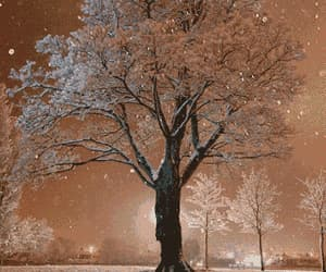 beautiful, charming, and snow flakes image