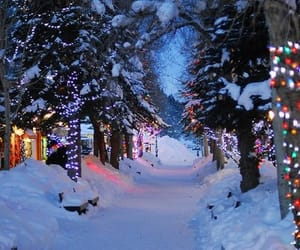winter, christmas, and december image
