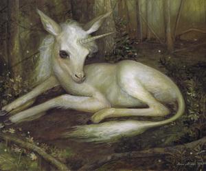 unicorn, fantasy, and forest image