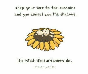 quotes, sunflower, and sunshine image