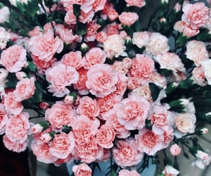 flowers and 🌸 image