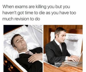funny, exams, and school image
