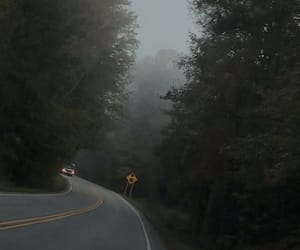 fog and roadtrip image