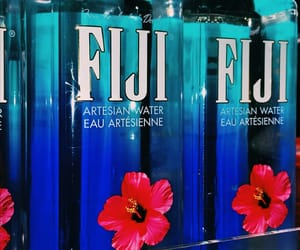 aesthetic, feed, and fiji image