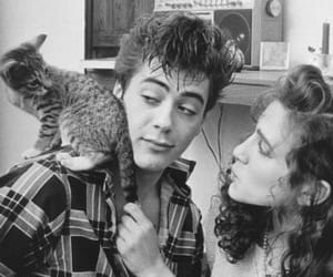 cat, actor, and robert downey jr image