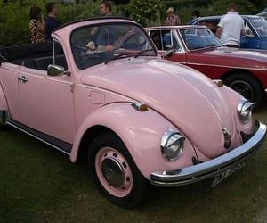 pink, car, and bug image