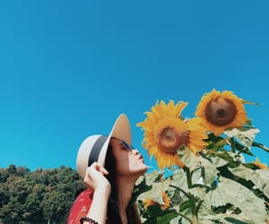 happy, sunflower, and sky image