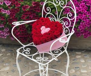beautiful, roses, and box image