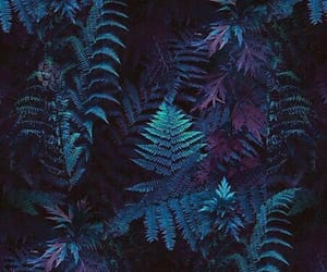 forest, leaves, and purple image