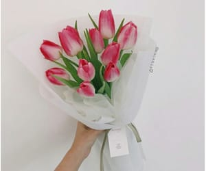 aesthetic, flowers, and bouquet image