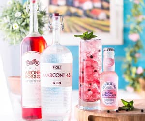 alcohol, drinks, and gin image