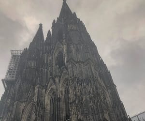 cologne, 2nd coloring, and the rose image