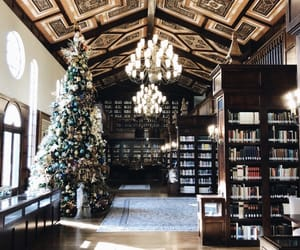 books, library, and christmas image