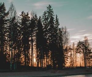 lake, moon, and woods image