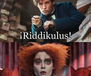 alice in wonderland, eddie redmayne, and funny image