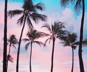 aesthetic, blue, and blue and pink image