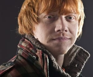 gryffindor, harry potter, and ron weasley image