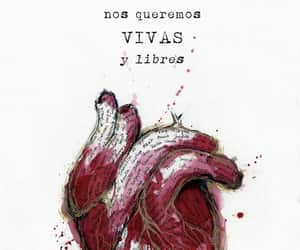 free, heart, and mujer image