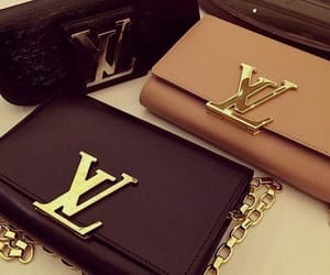 accessories, Louis Vuitton, and bag image