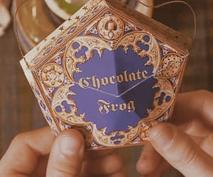 chocolate, frog, and harry potter image
