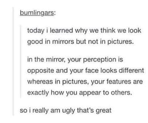 beautiful, pictures, and mirror image