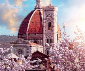 florence, flowers, and italy image