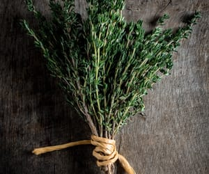 food photographer, food photography, and herbs image