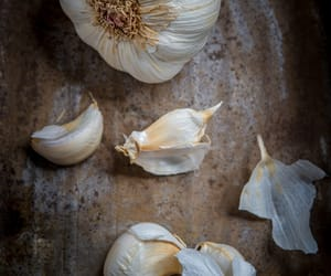 food photographer, fresh, and garlic image