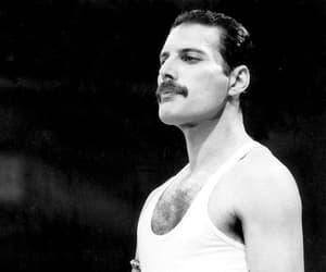 band, Freddie, and Freddie Mercury image