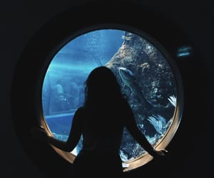 aquarium, spain, and Barcelona image