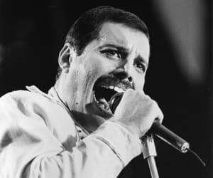 band, Freddie Mercury, and icon image