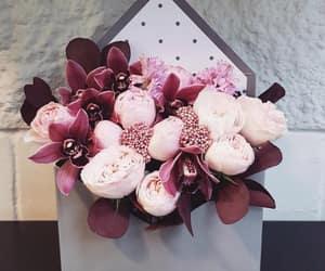 beauty, fashion, and flowers image
