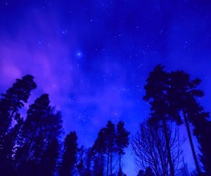 blue, nightsky, and starrynight image