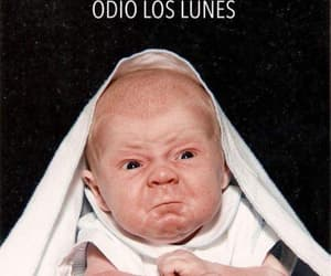 divertido, lunes, and humor image