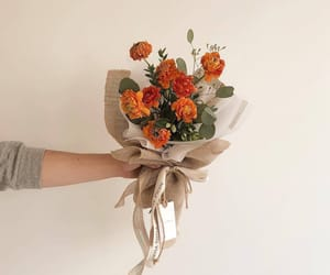 aesthetic, flowers, and orange image