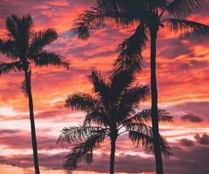 background, evening, and orange image