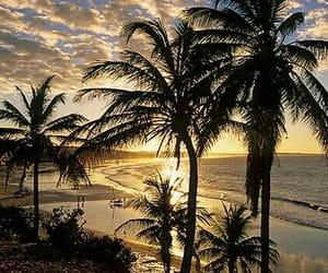 nature, soleil, and ocean image