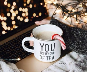 coffee, cozy, and lights image