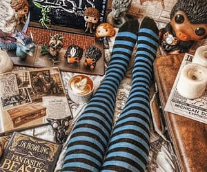 book, harry potter, and newt image