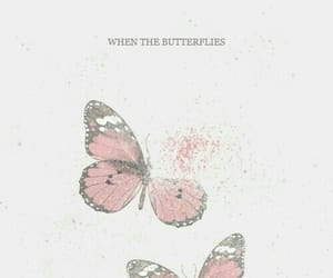 Taylor Swift, Lyrics, and butterfly image