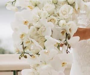 beautiful, Dream, and wedding image