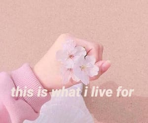 aesthetic, pink, and text image