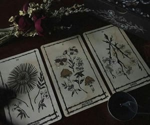 aesthetic, black magic, and cards image