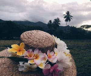 flowers, peace, and relax image
