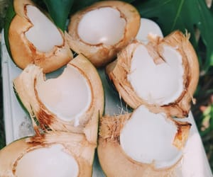coconuts, fresh, and FRUiTS image