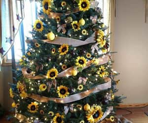 christmas, sunflower, and flowers image