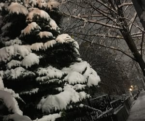 aesthetic, snow, and tree image
