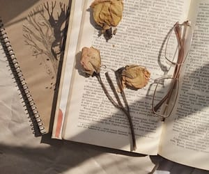 book, aesthetic, and theme image