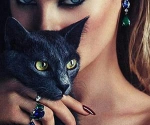cat, beauty, and makeup image