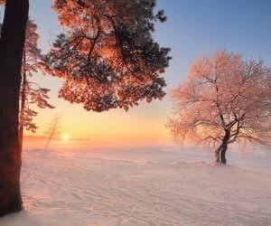 cold days, wonderland, and snow image